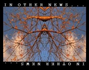 othernews